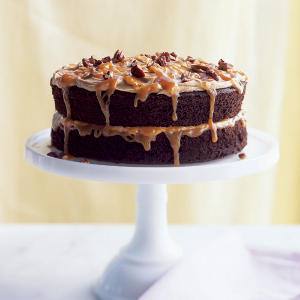 Double-Caramel Turtle Cake Recipes