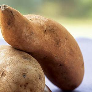 Fall Sweet Potato Guide