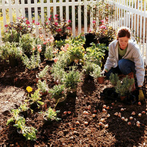 Earth-friendly Gardening