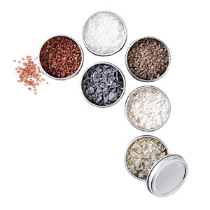 The Meadow Salt Starter Set