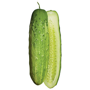 Straight Eight Cucumbers