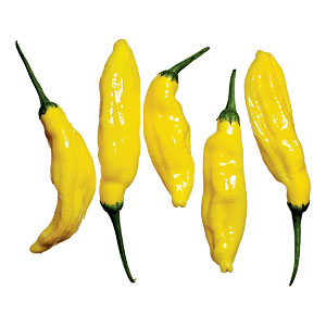Lemon Drop Peppers