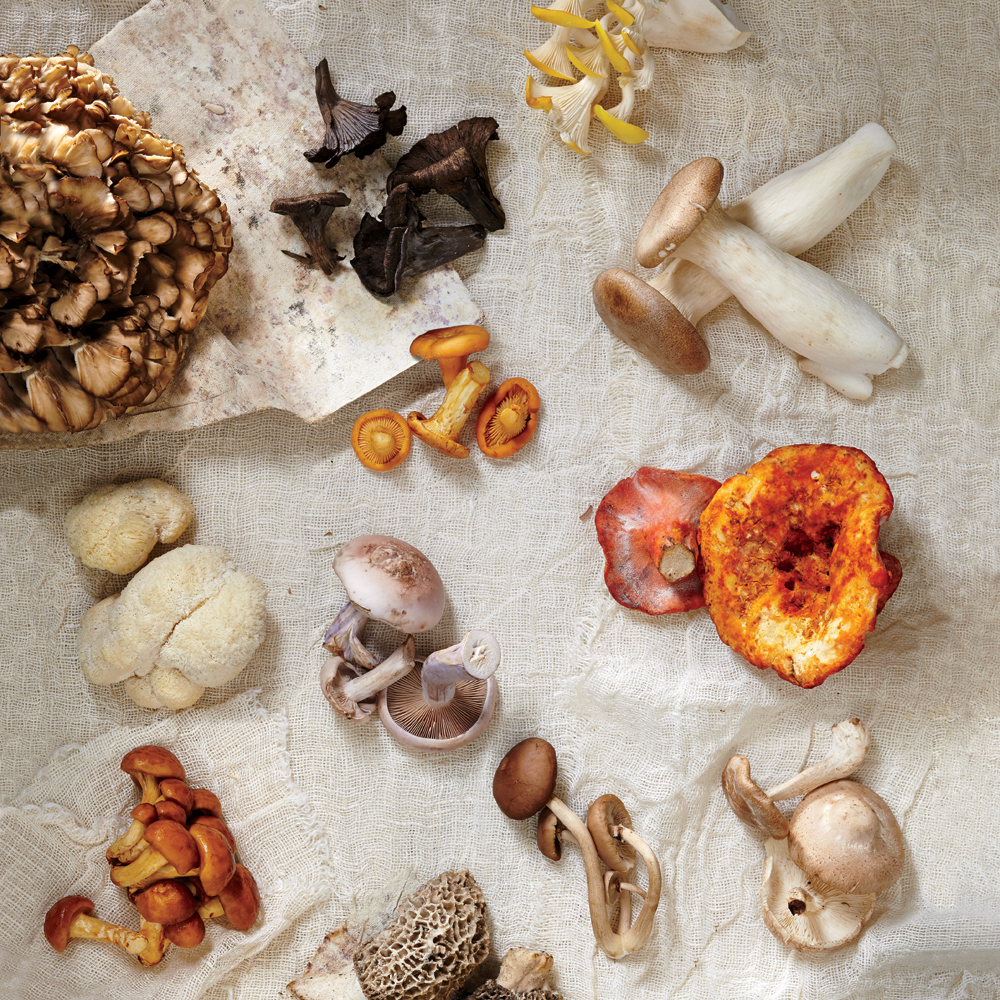 12 Delicious Exotic Mushrooms - Cooking Light