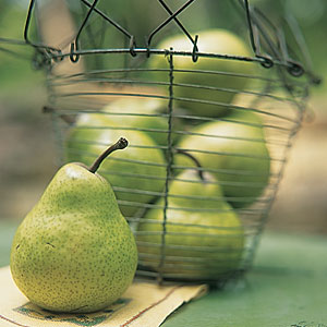 Fall Pears Guide