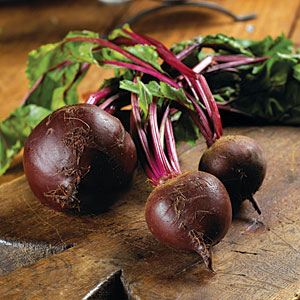 Winter Beets Guide