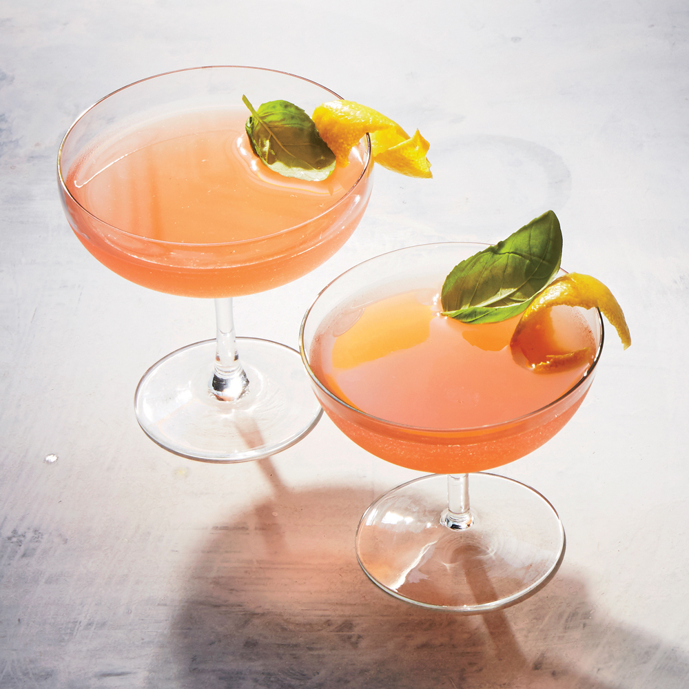 A cocktail: Rhubarb-Basil Shrub Cocktails