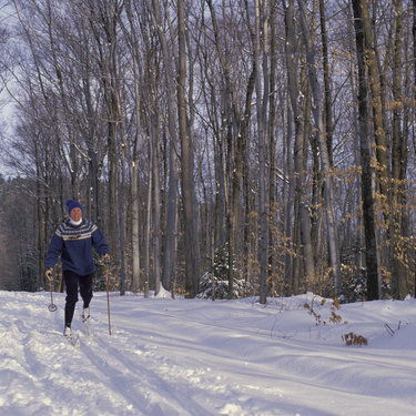 The Twin Cities' Metro Ski Trails Minnesota