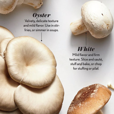 Oyster and White Mushrooms