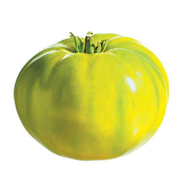 Spear's Tennessee Green Tomatoes