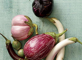 Our Favorite Eggplant Varieties