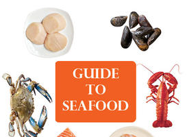 6 Common Saltwater Fish and Shellfish
