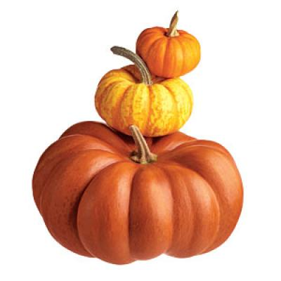 Selecting A Pumpkin for Cooking