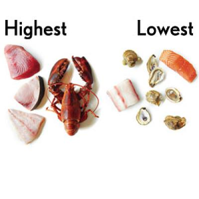 You avoid seafood because of the risk of mercury