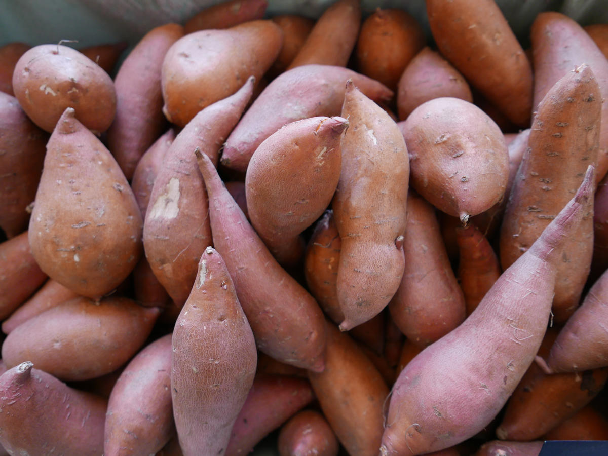 What is the Difference Between Sweet Potatoes and Yams ...