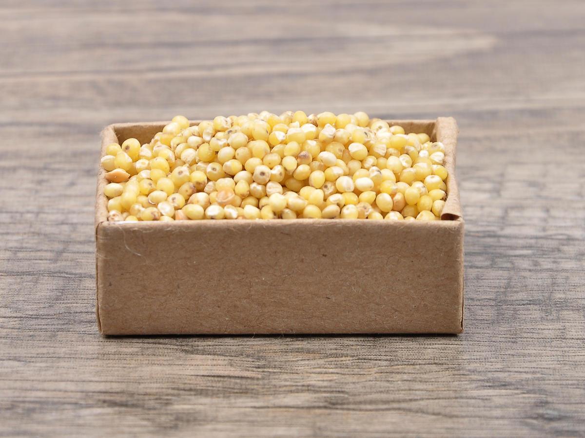 Sorghum Whole Grain