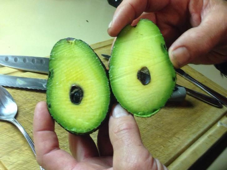 Pitless Avocado