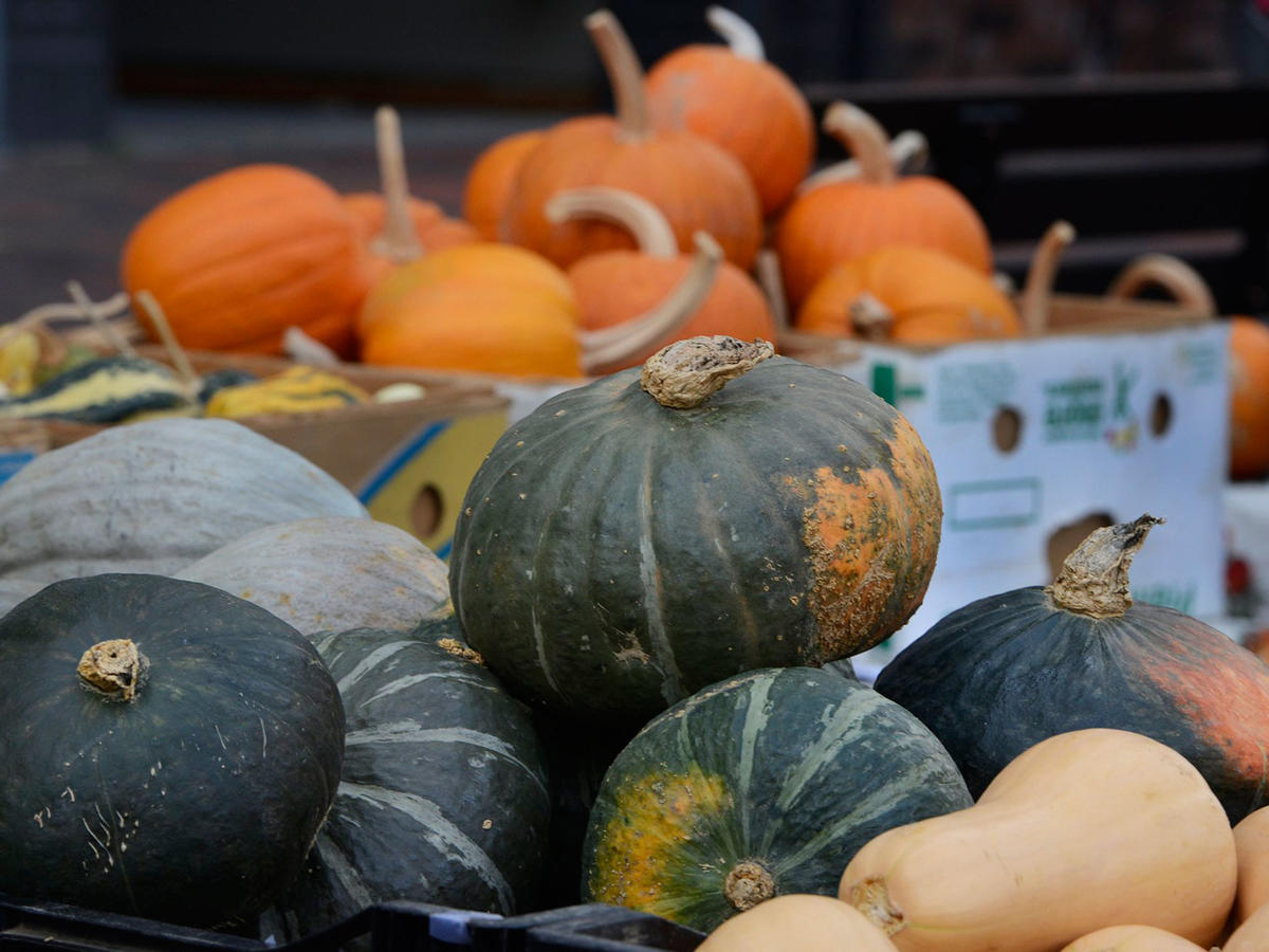 10 Squash Varieties You Should Be Eating