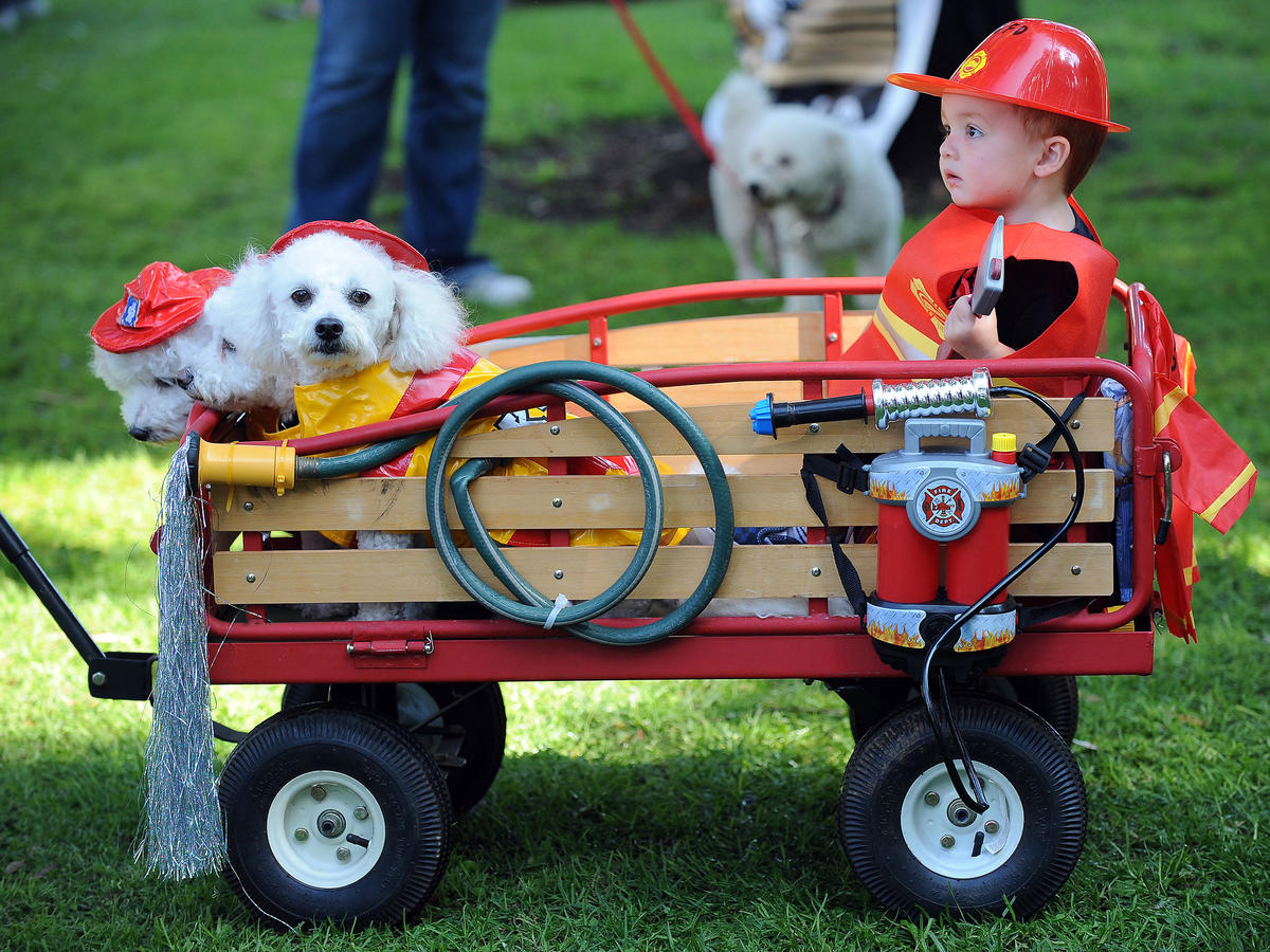 Wagon For Kids