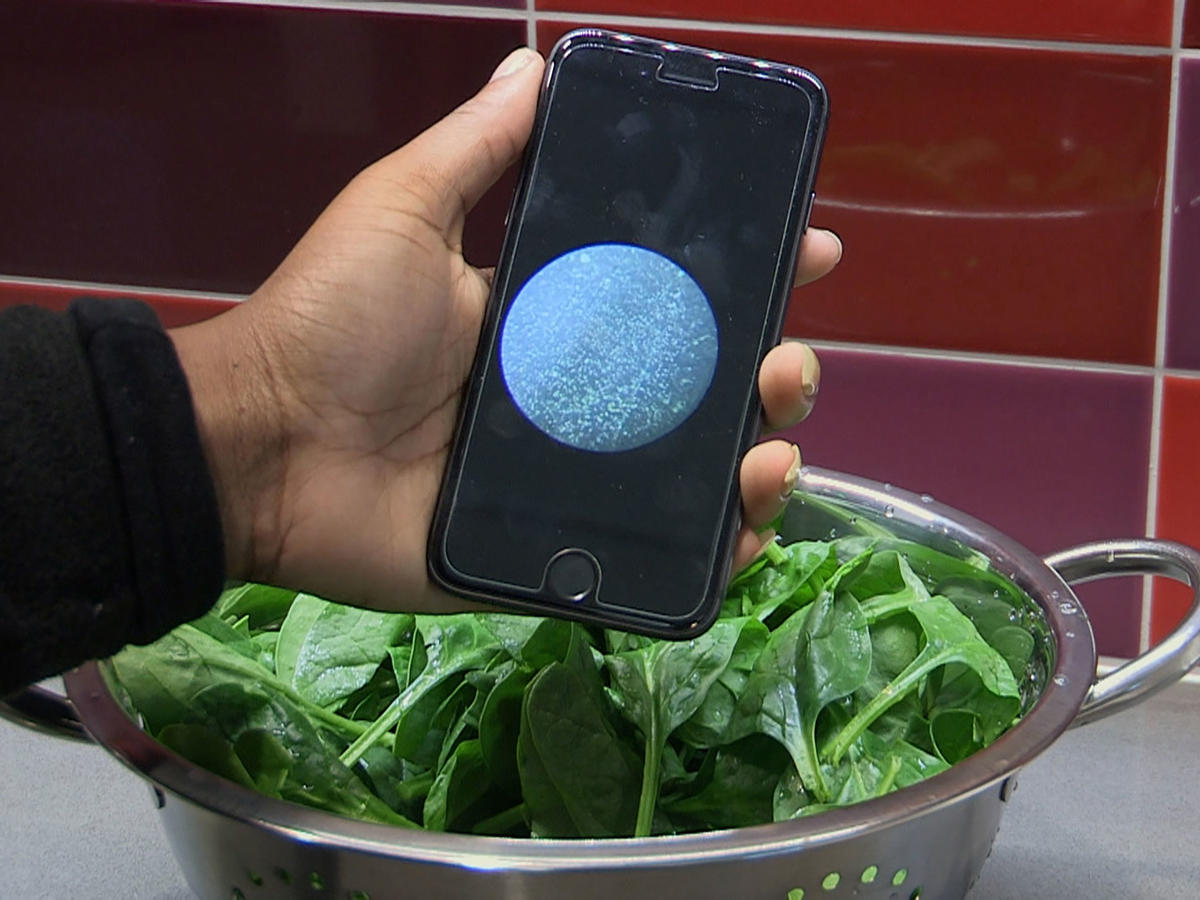 smartphone app detecting bacteria in food