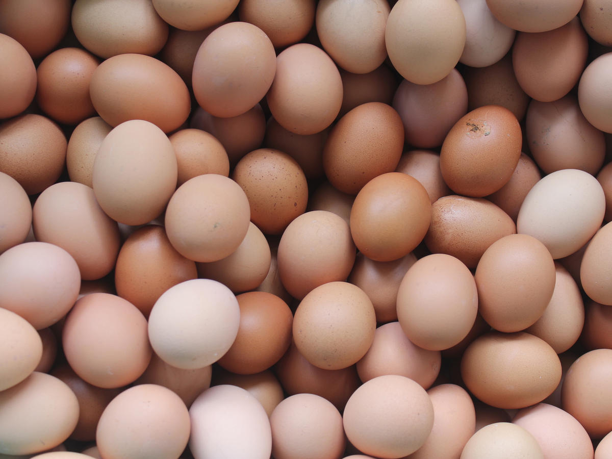 Egg Prices Have Returned to Normal—And Could Get Even Cheaper