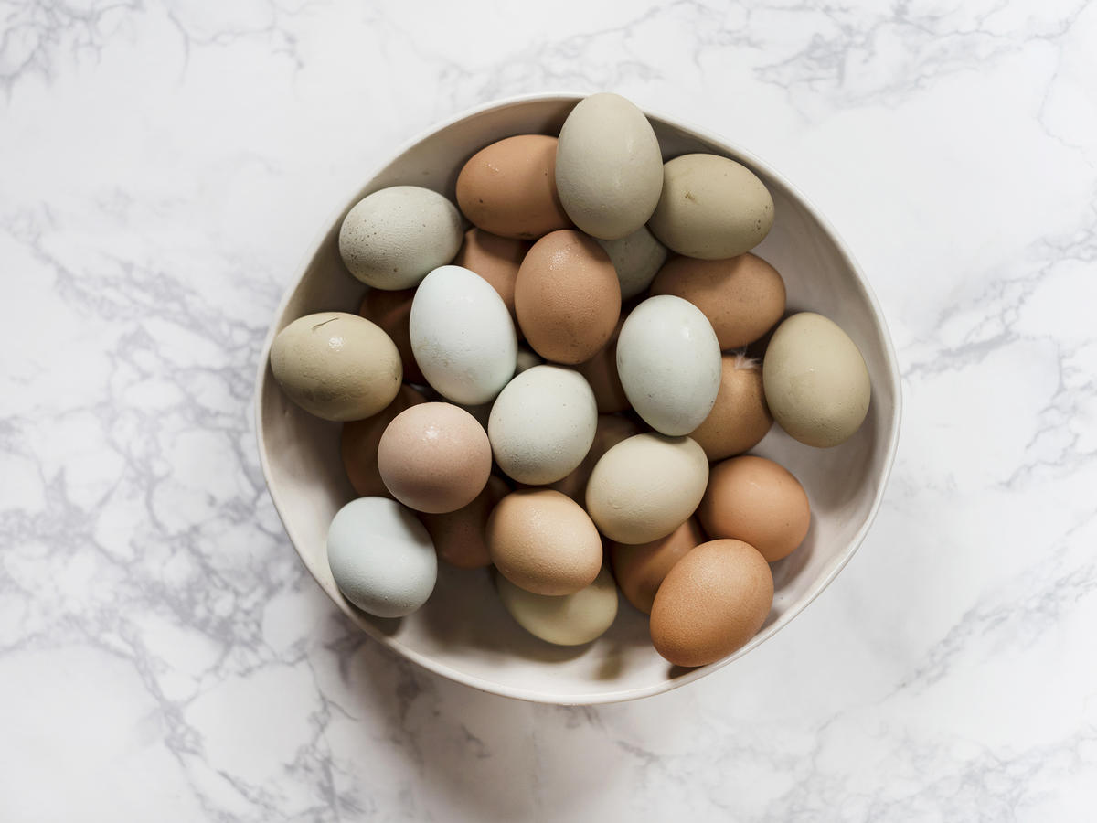 1809w Organic Eggs EVERGREEN