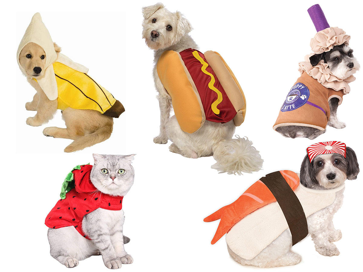 23 Food-Related Halloween Costumes for Your Furry Friend