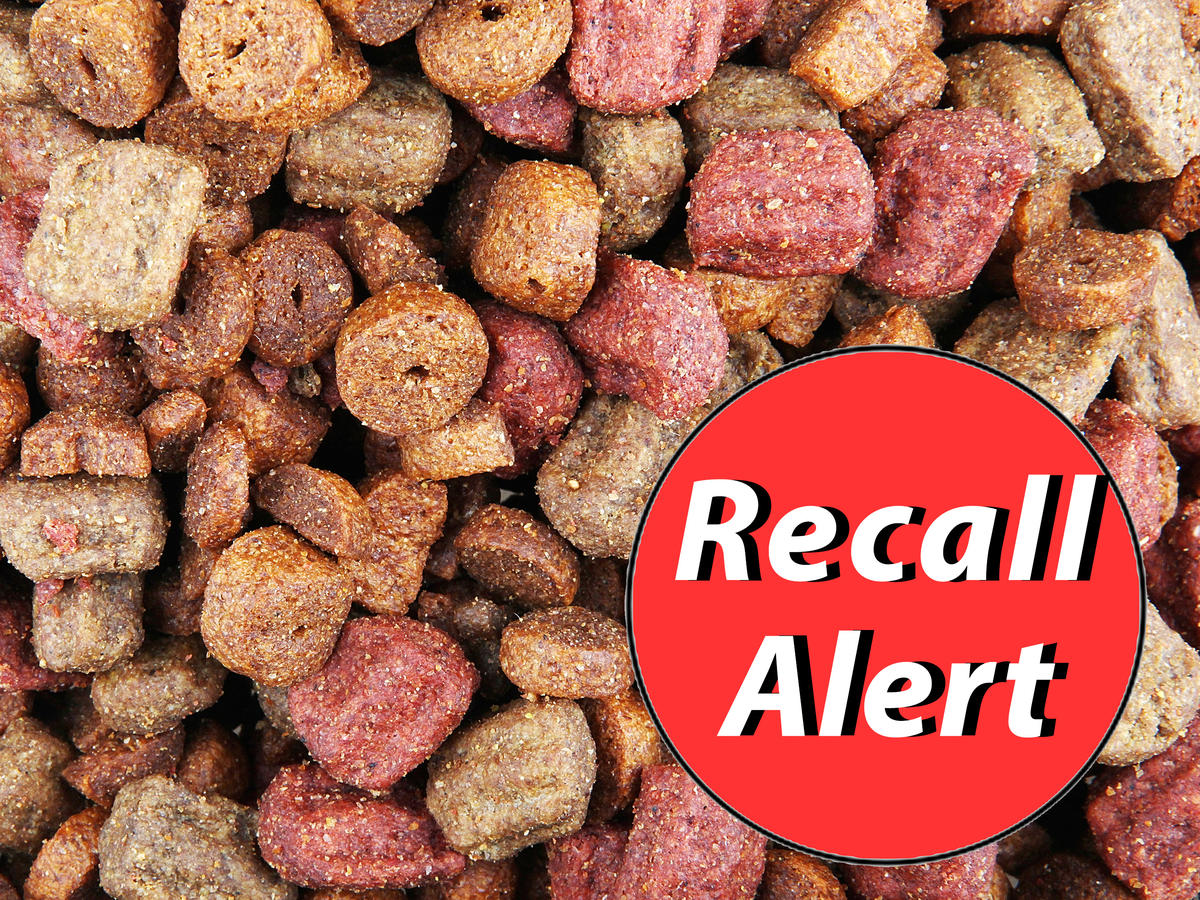 Update: Multiple Dog Food Brands Recalled for Toxic Levels of Vitamin D, Salmonella