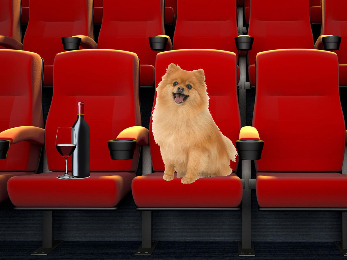 This Movie Theater Lets You Bring Your Dog—And Offers Bottomless Wine!