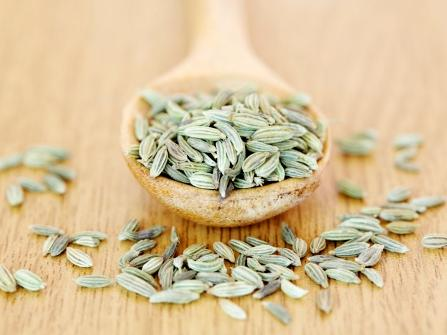 fennel-best-foods-for-flat-abs
