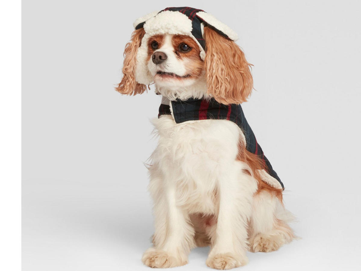 RX_1812_Joanna Gaines Target Dog Hat