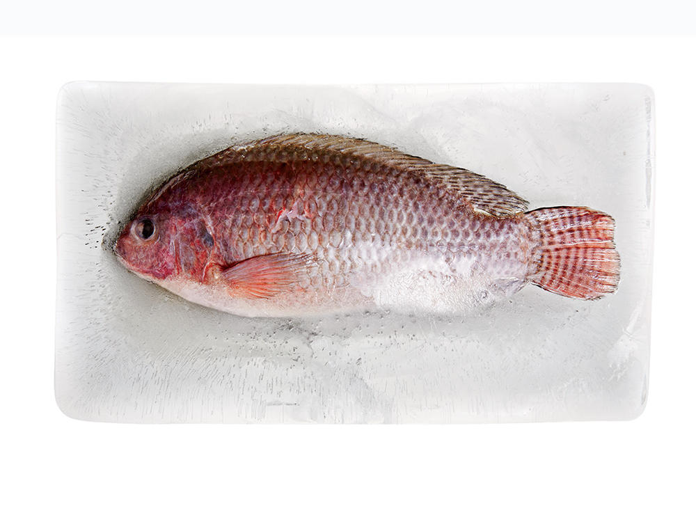 Why You Should Be Eating More Frozen Fish–and What You Need to Know Before Buying It