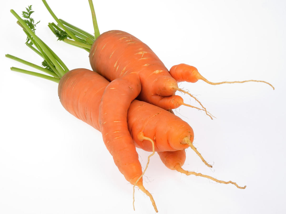 1604w-getty-ugly-carrots.jpg