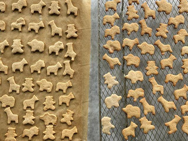 1604w-whole-grain-animal-crackers.jpg
