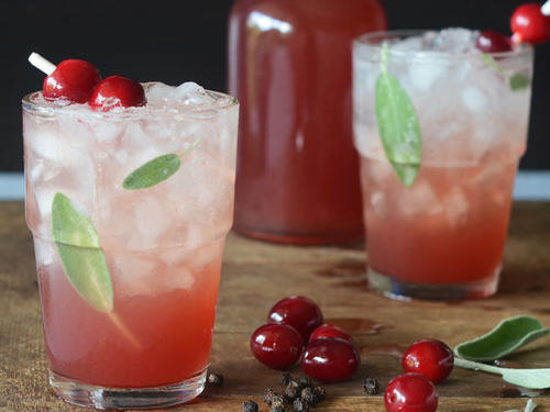 1610w-cranberry-peppercorn-sage-shrub-soda.jpg