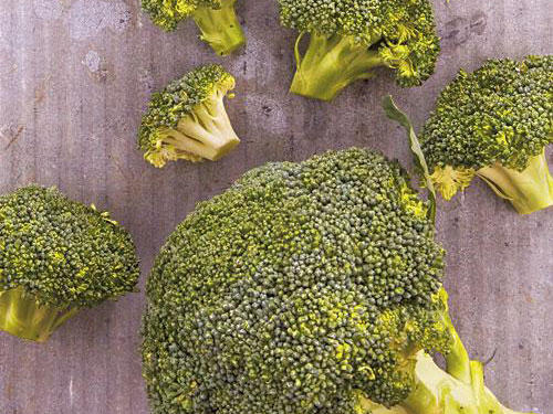 broccoli growing tips