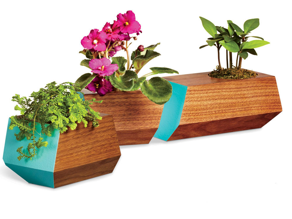 Succulent Planter Set