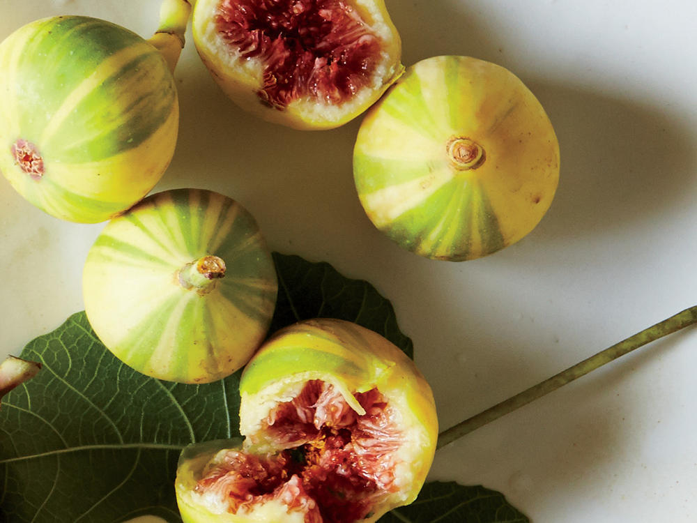 Striped Tiger Figs