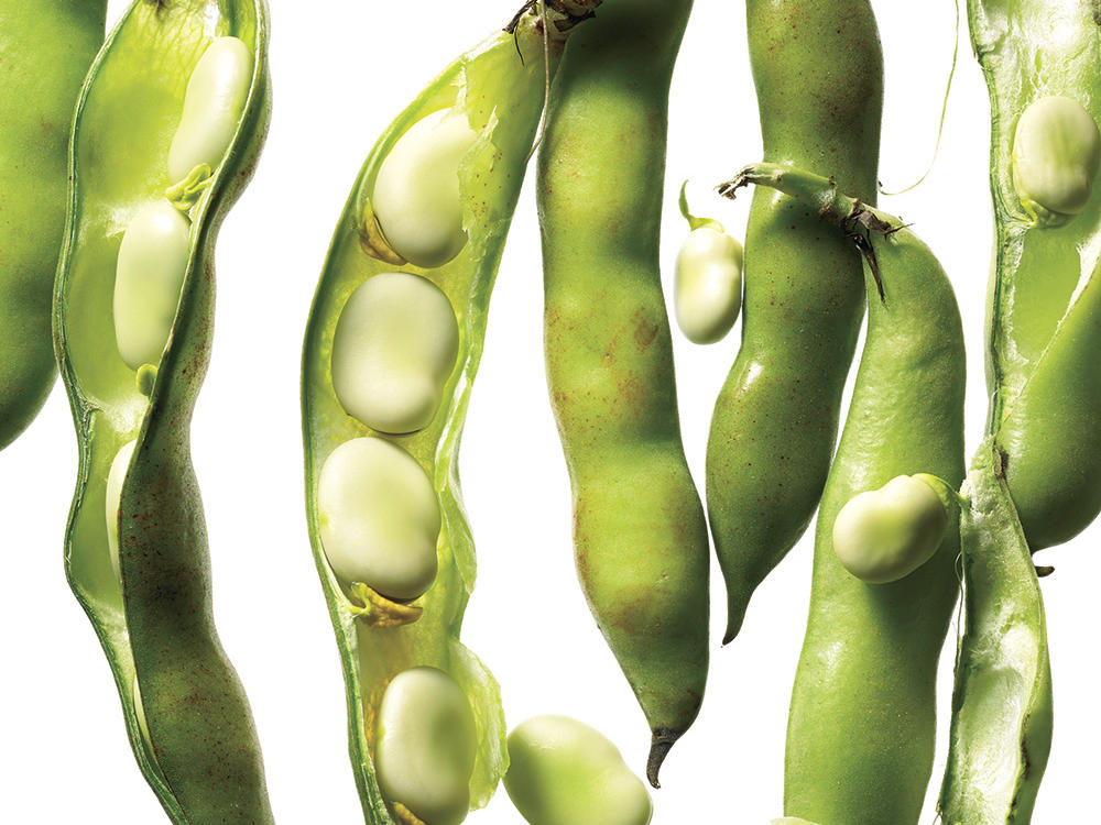 Spring Vegetables and Fruits: Fava Beans