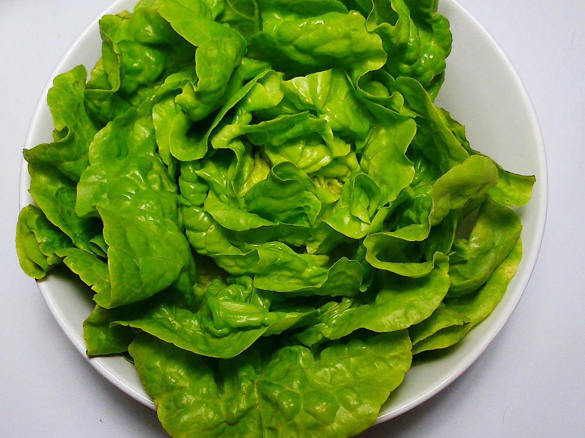 lettuce bowl close up