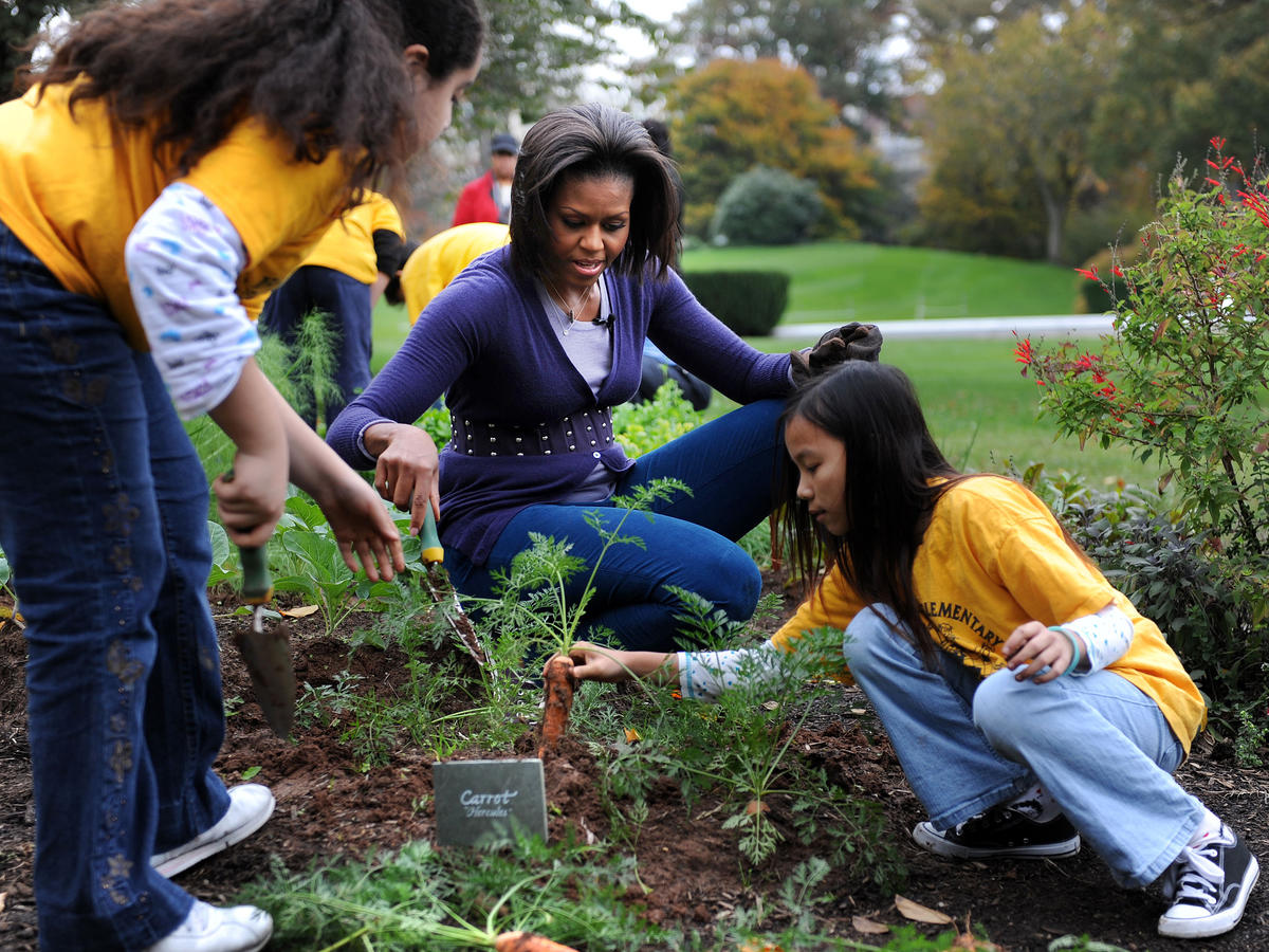 Michelle Obama's White House Kitchen Garden Preserved with $2.5 Million Grant