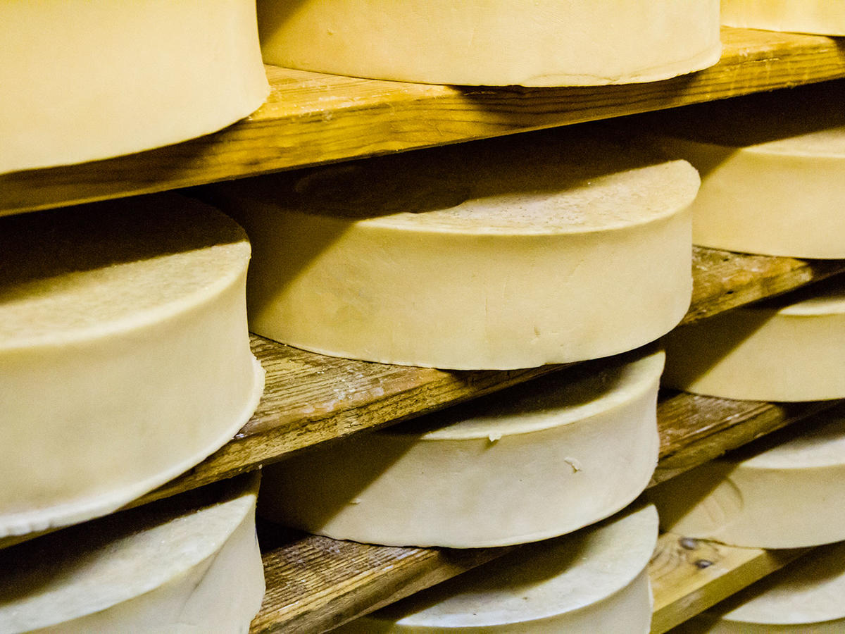 What Do I Substitute for Fontina Cheese?