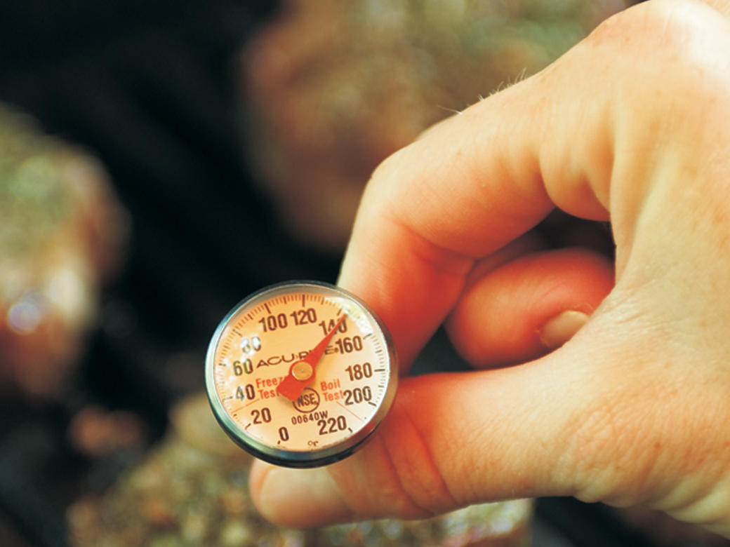 We should all use meat thermometers more often. Digital is great, but a simple manual one works fine.