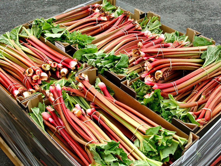 Once a home-baking staple, this sweet-tart vegetable (it's the leaf stalk of the plant, not botanically a fruit) has waned in popularity, and that's a shame. Rhubarb peaks in availability from April to June, grows all over the country, and can be used in savory applications like the tangy chutney below in addition to traditional sweet desserts.                                                      Get the Recipes: Our Best Rhubarb Recipes