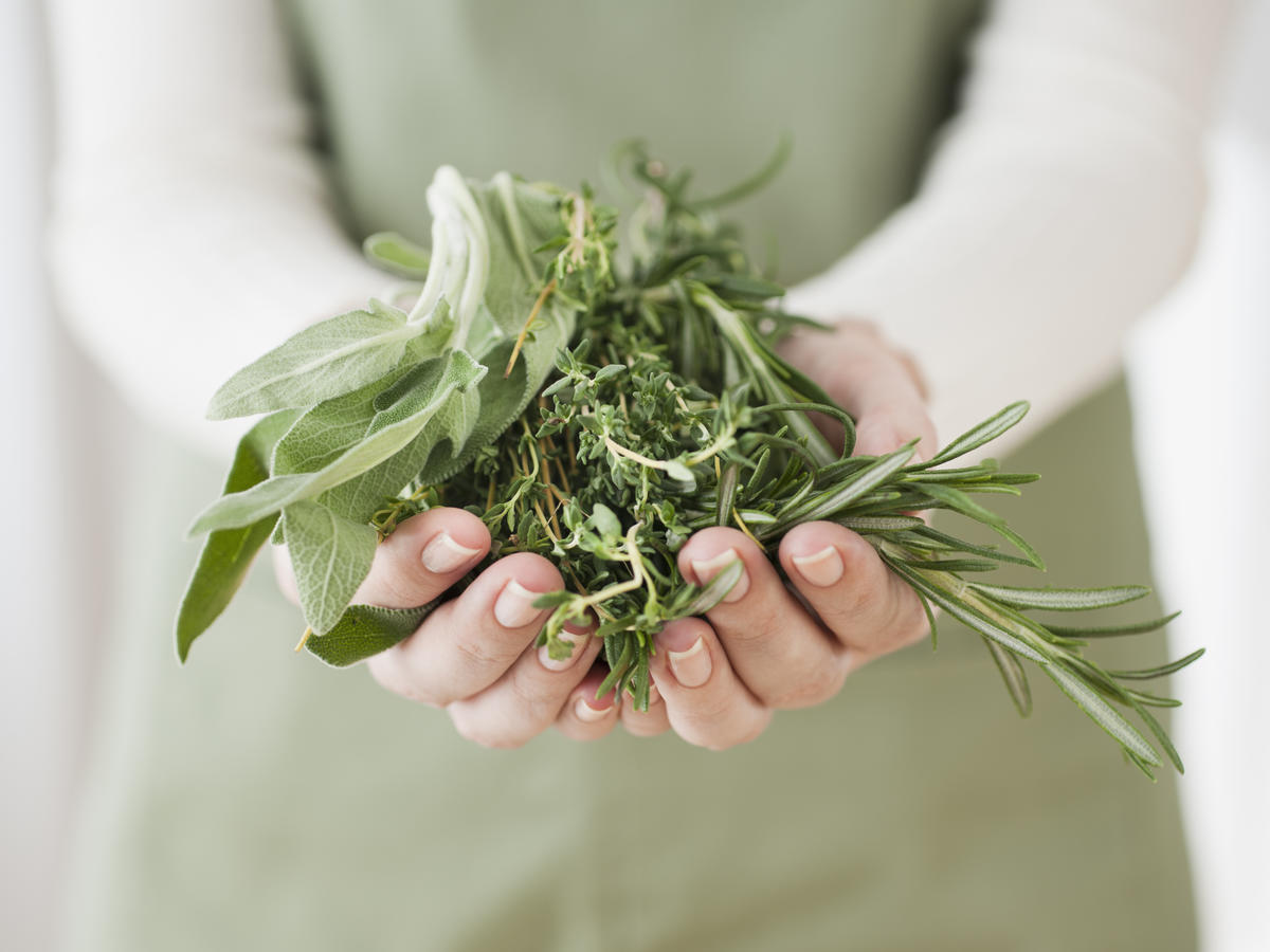 Woman Holding Wild Herbs