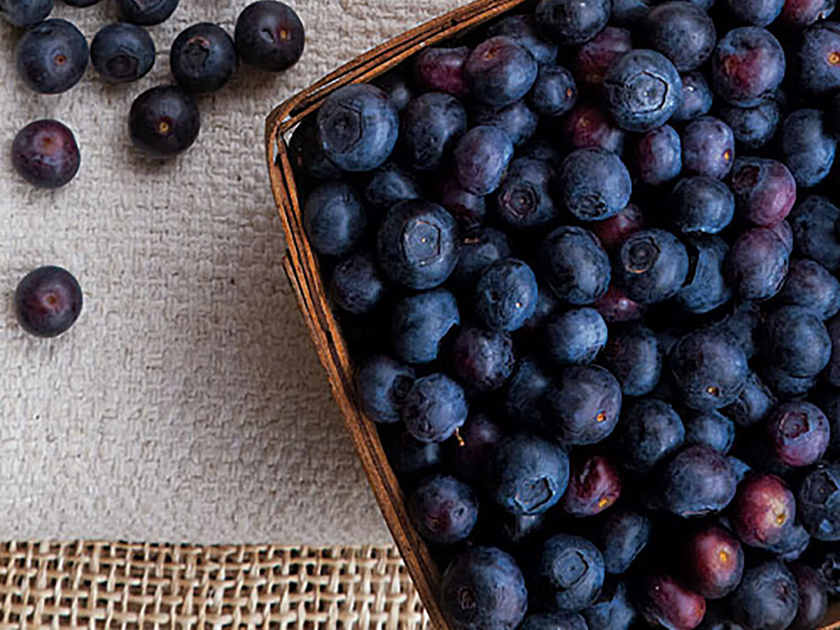 MIND researchers focused fruit intake solely on berries, all of which are packed with antioxidants. Blueberries' levels lead the list, appearing to help protect sensitive brain cells from harmful free radicals.