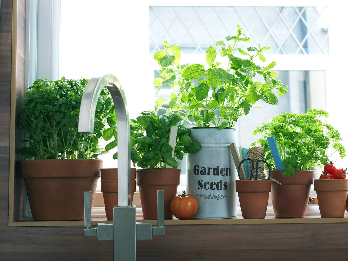 11 Fresh Herbs Every Home Cook Should Use