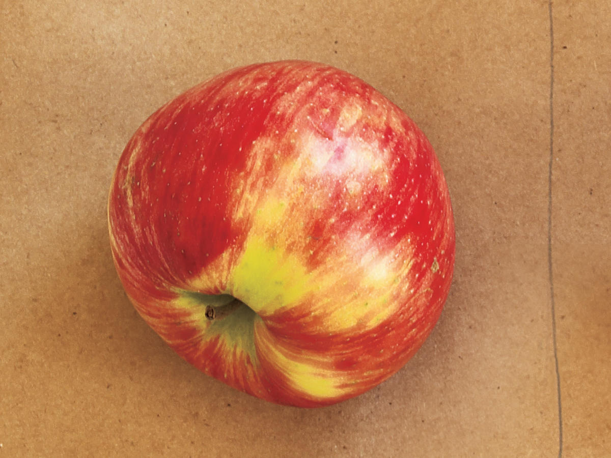 Honeycrisp Apple Types