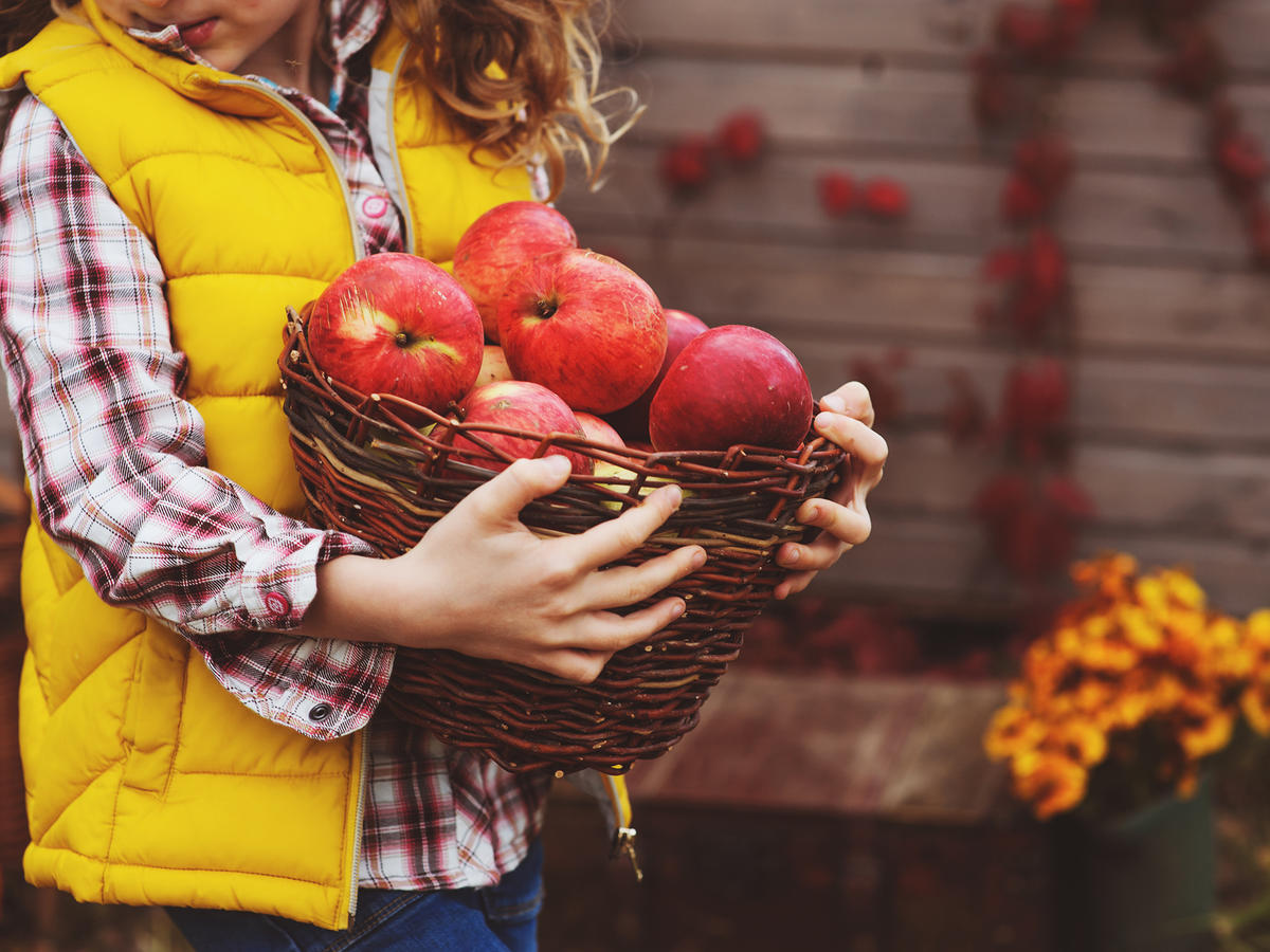 Healthy Fall Produce Guide