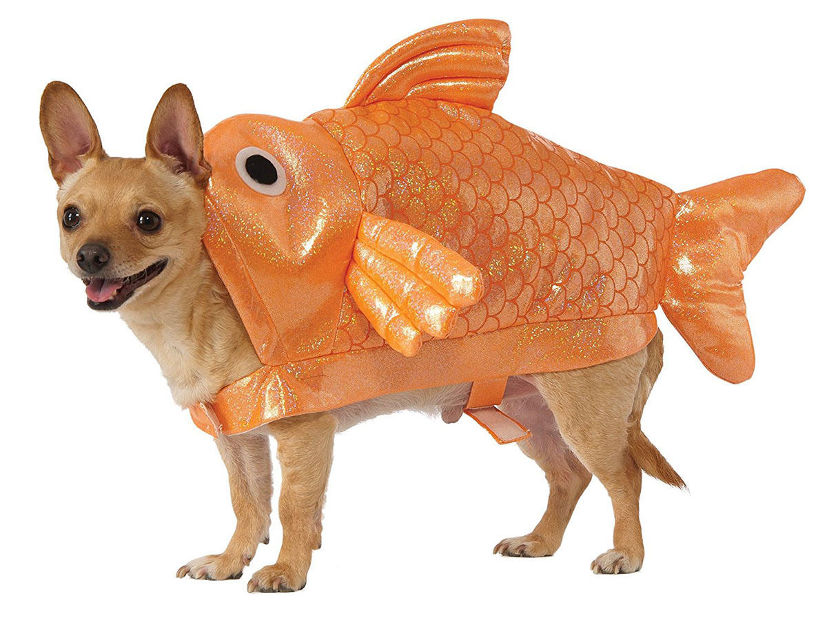 23 Food Related Halloween Costumes For Your Furry Friend Cooking Light