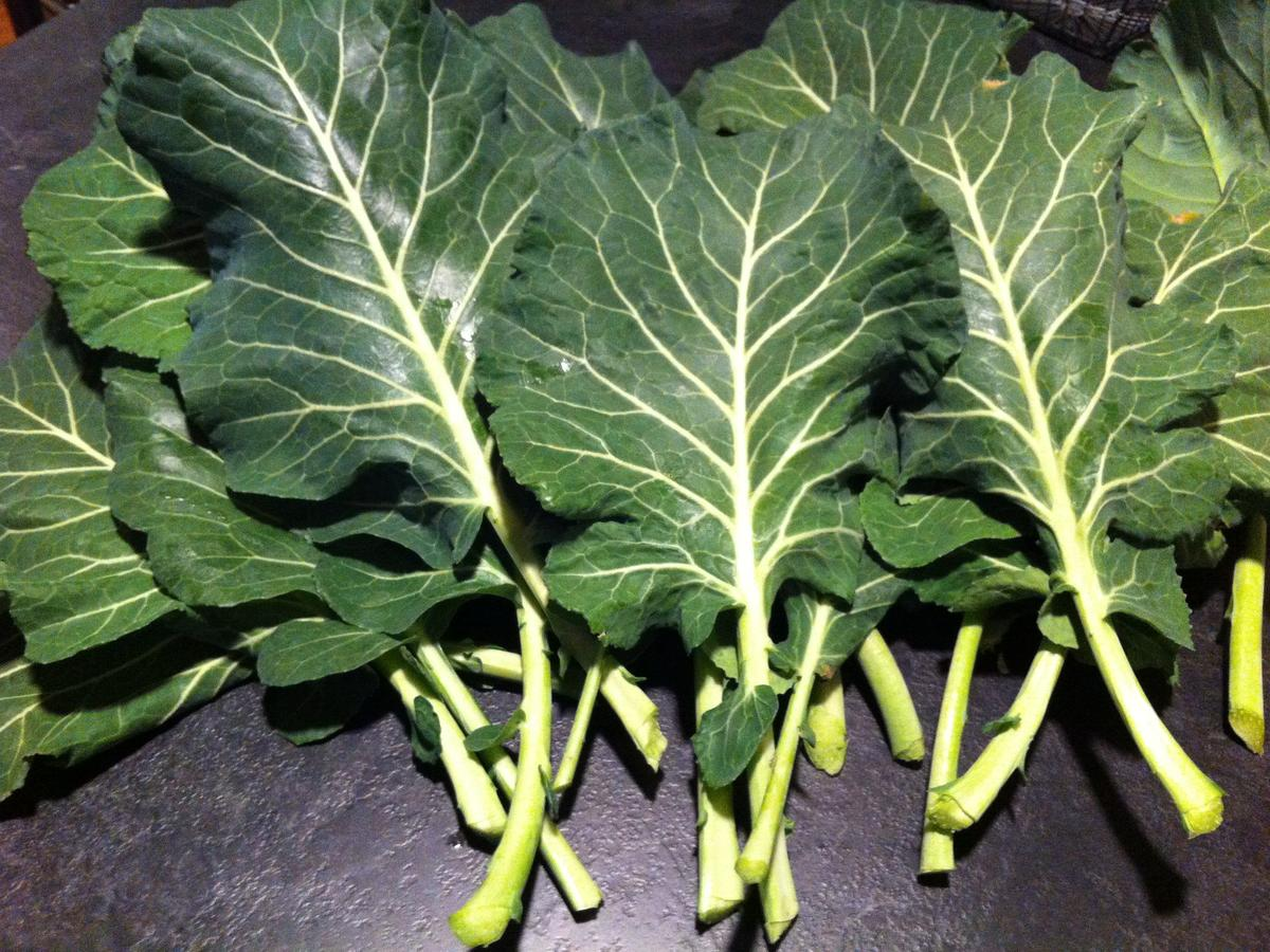 collards_mb_nye12.jpg